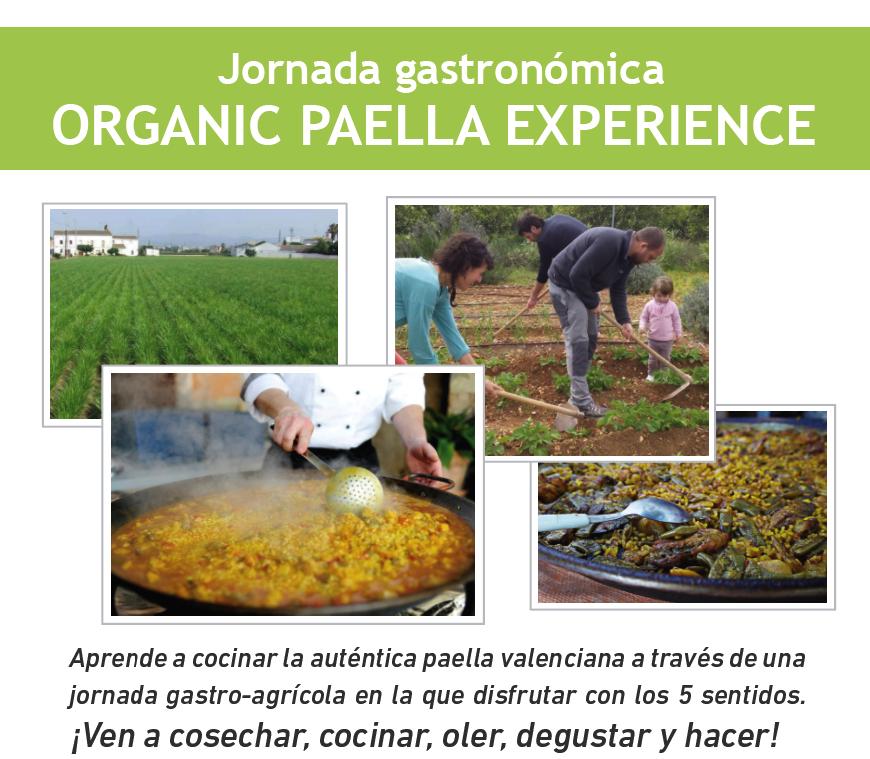 jornada-paella_cuadrado