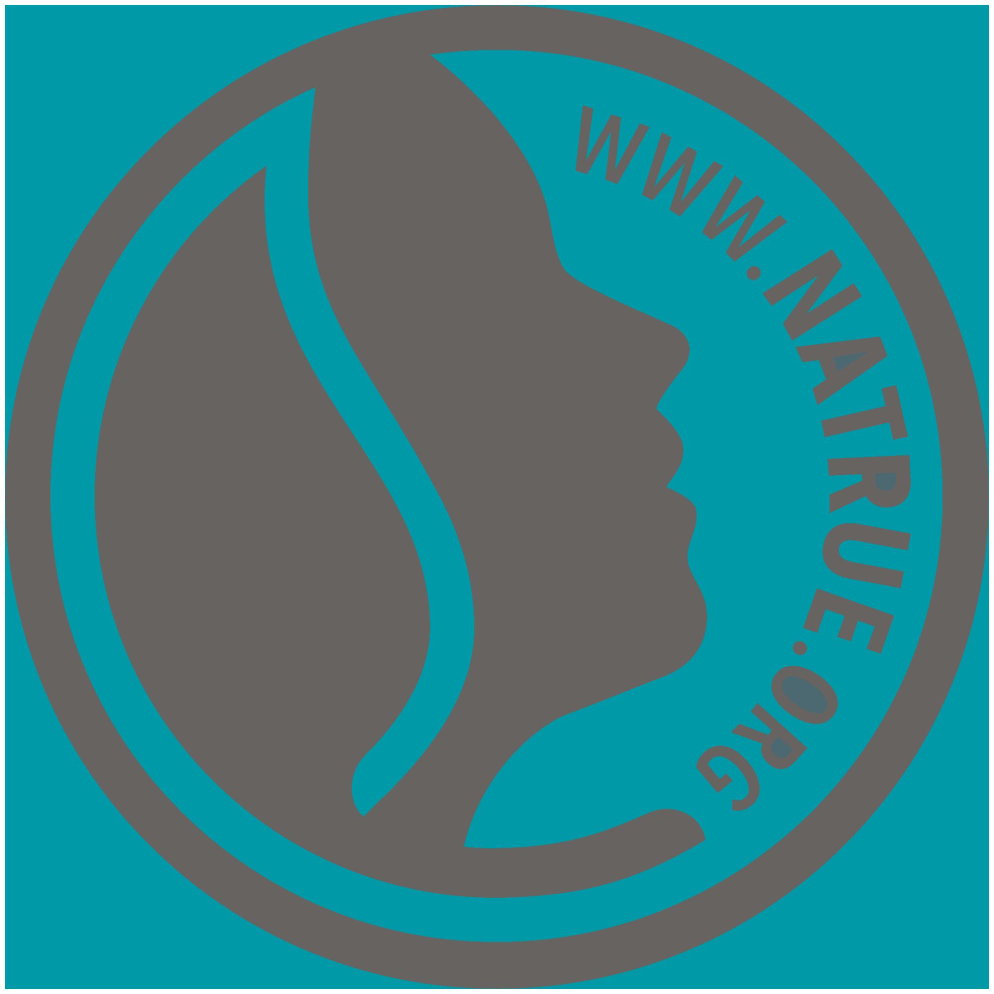 Resultado de imagen de natrue logo