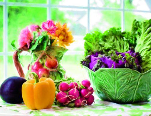¿Por qué es bueno comer frutas y verduras ecológicas de temporada?